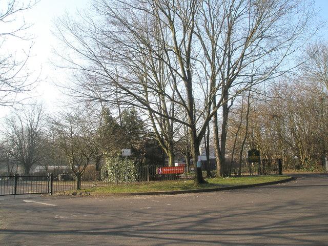 Herne Junior School