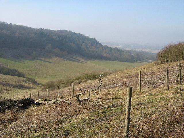 Aston Rowant NNR chalk grassland
