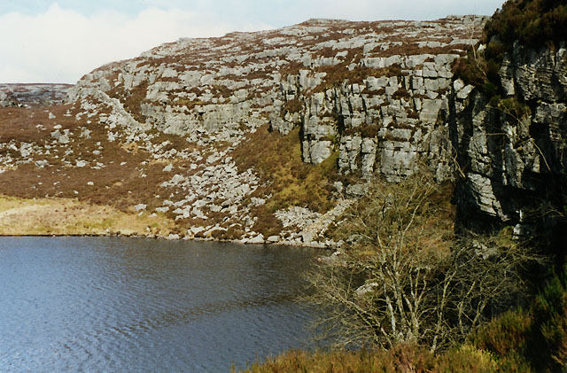The east end of Llyn Morwynion