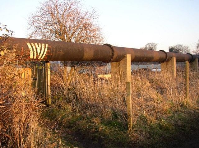 Pipeline, Otley