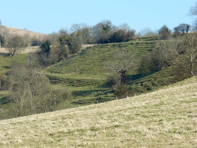 Soil creep on the slope west of Prospect Stile, Kelston