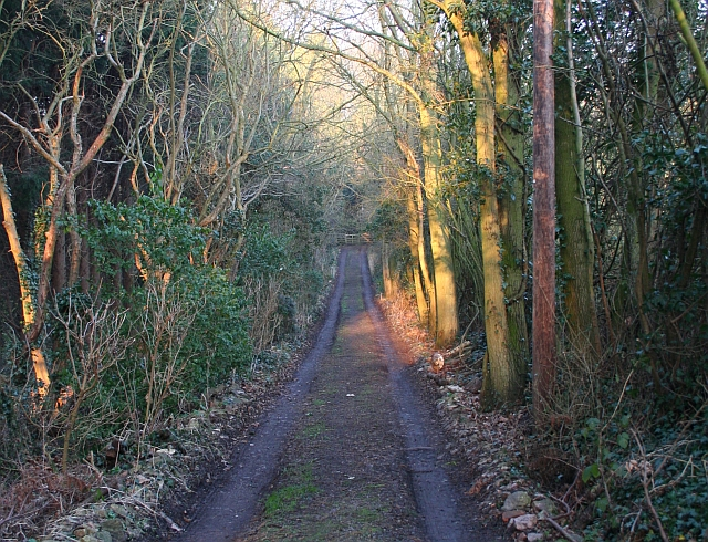 Track to Millbrook Cottage