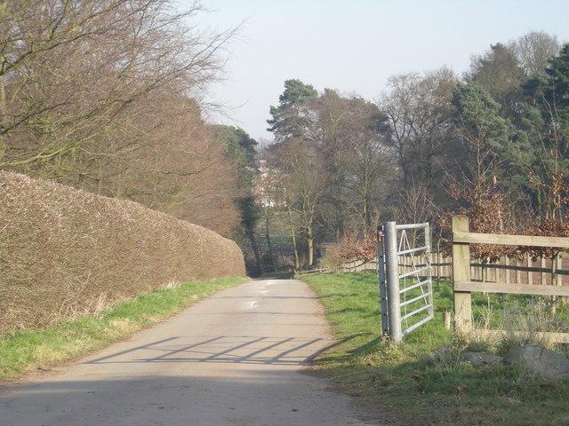 Driveway to Hatton Grange