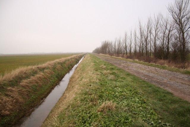 Cow Marsh Lane