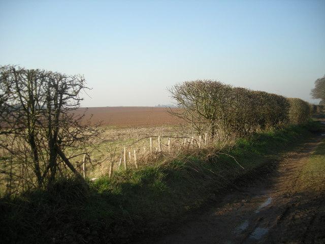 Recently tilled land