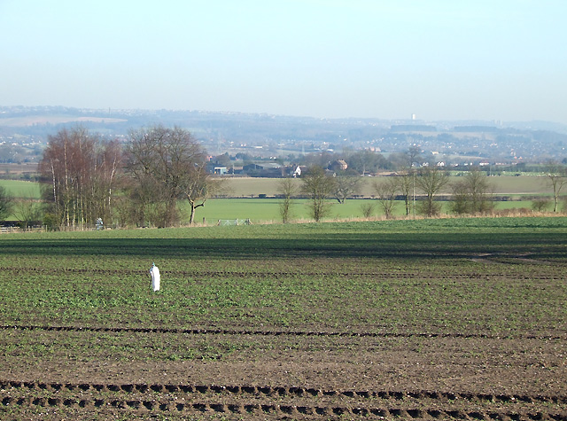 Crop Fields south of Seisdon, Staffordshire