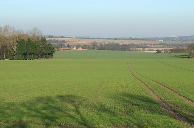 Crop Fields towards Trysull, Staffordshire