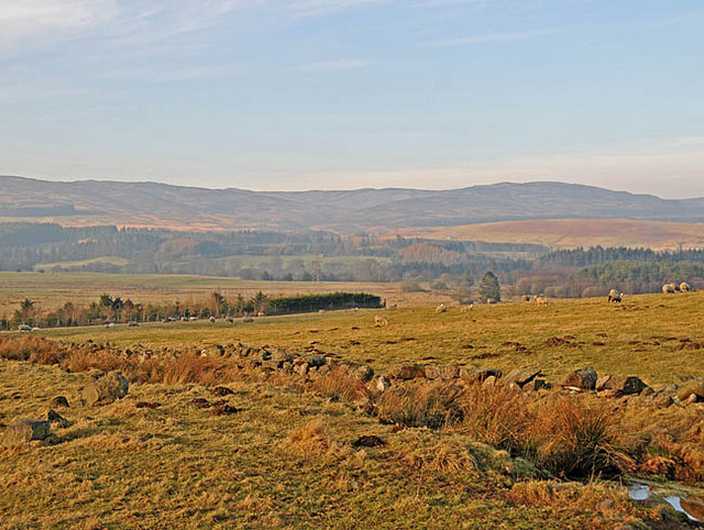 Farmland North of Gorthy Wood