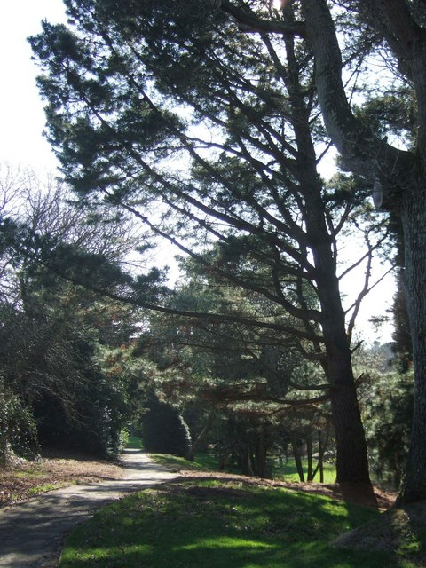Grounds, University of Exeter