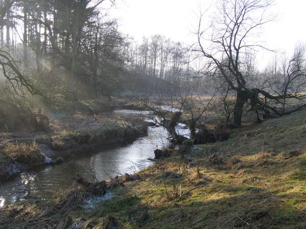 River Leith near Cliburn