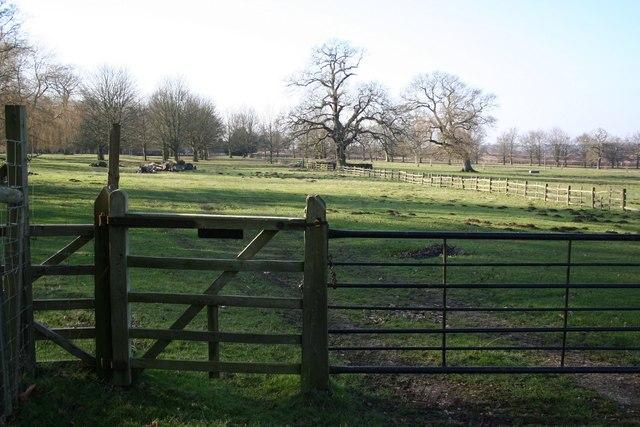 Scrivelsby Park