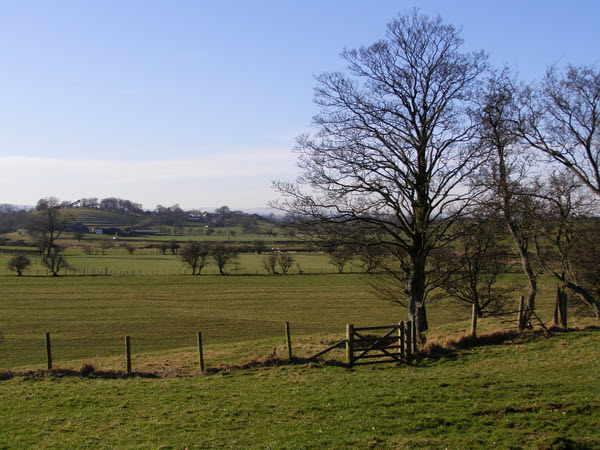 View towards Great Musgrave