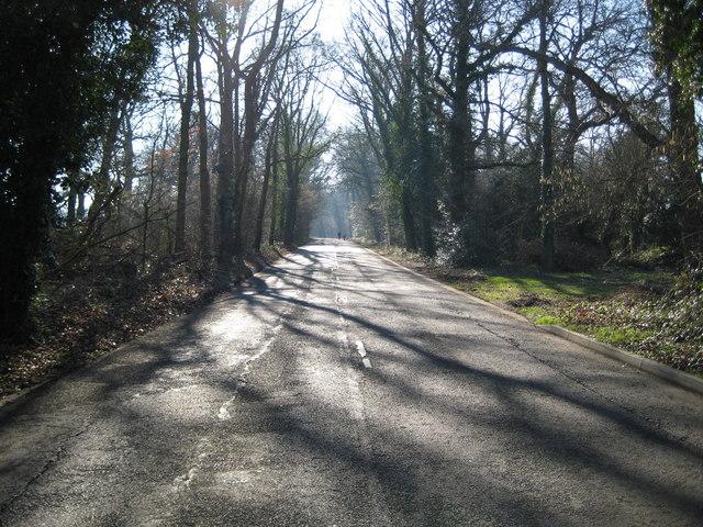 Burpham: Merrow Lane