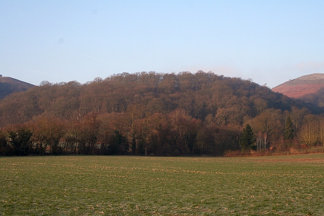 Tinker's Hill