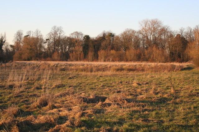 Ridge in a field