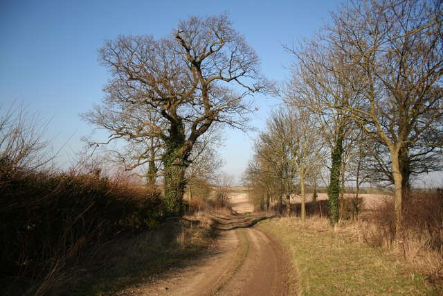 Eastbeck Lane