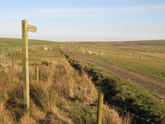 Public bridleway to Bundle Hill (and beyond)