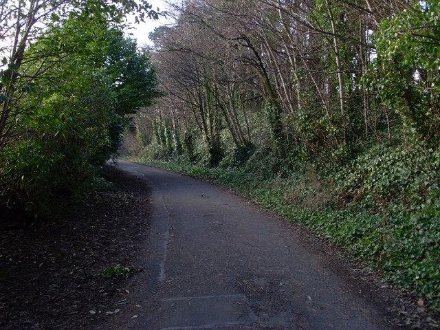 Path through woods north of Craigmaddie Reservoir