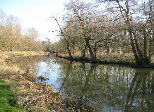 River Wey Navigation near Bowers Lock