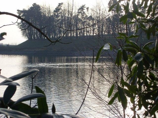 Craigmaddie Reservoir through the vegetation