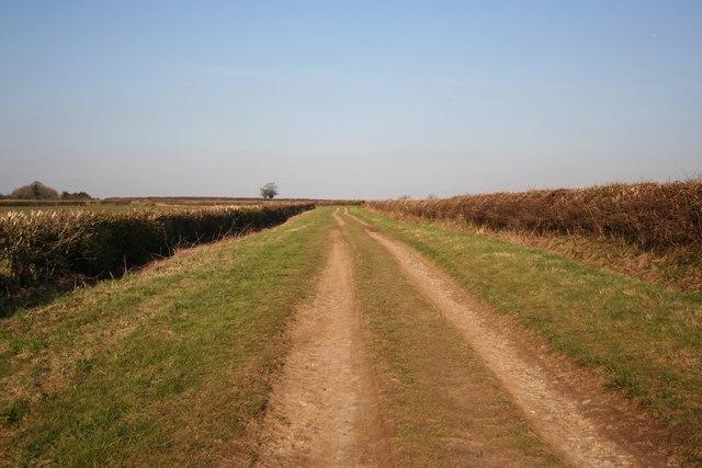 Eastbeck Lane