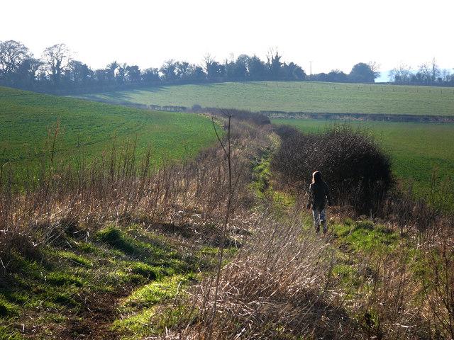 Footpath, heading towards Cheriton