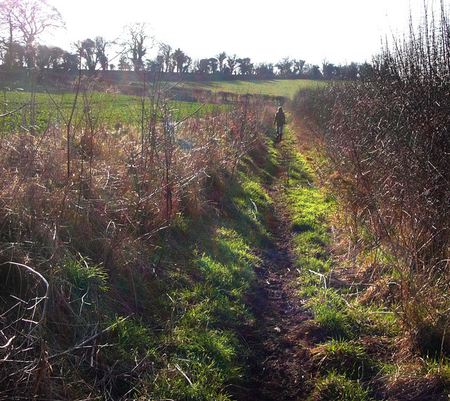 Footpath, heading towards Cheriton