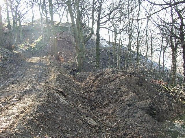 Site track at the landslip, Reins Wood, Rastrick
