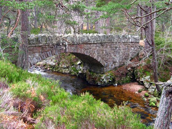Bridge over the Water of Allachy, Glen Tanar