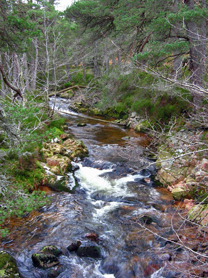 Water of Allachy, upstream from the bridge