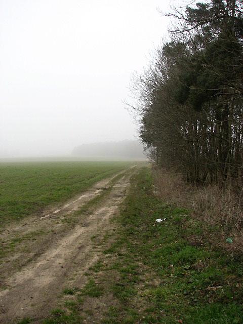 Track north past Stewart's Plantation
