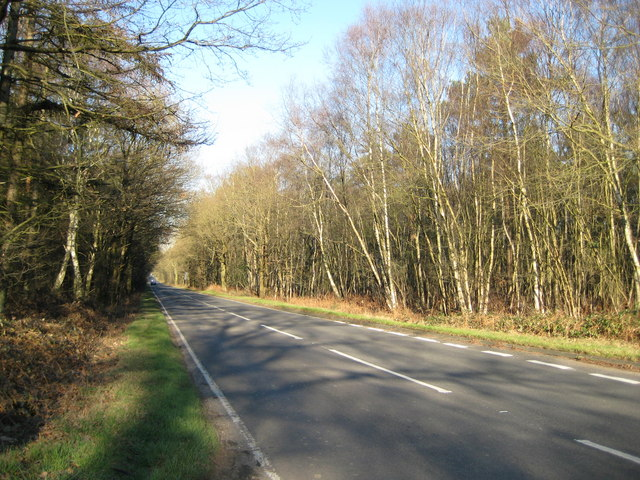 Stanford Common: A324 Pirbright Road