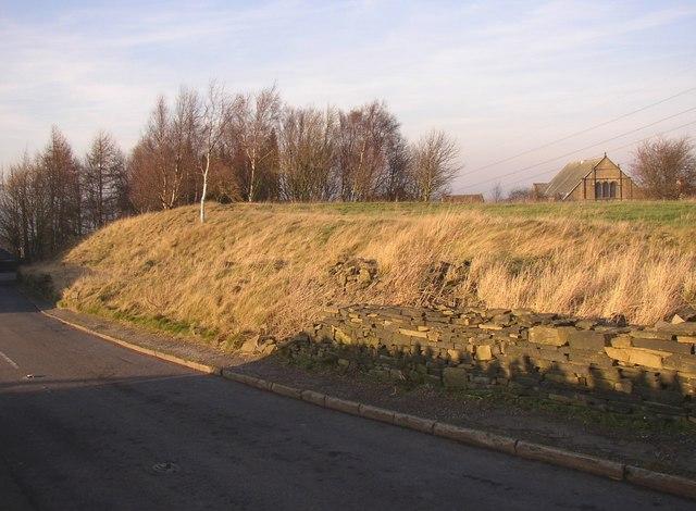 Roadside embankment, Pinfold Lane, Rastrick