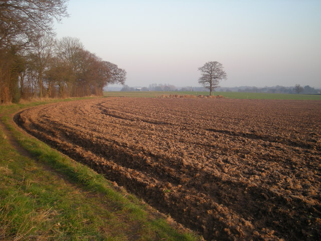 Path diverted around field edge