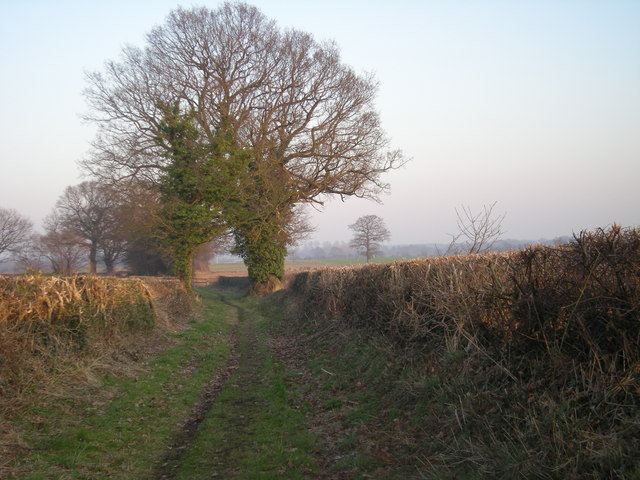 Footpath to the fields