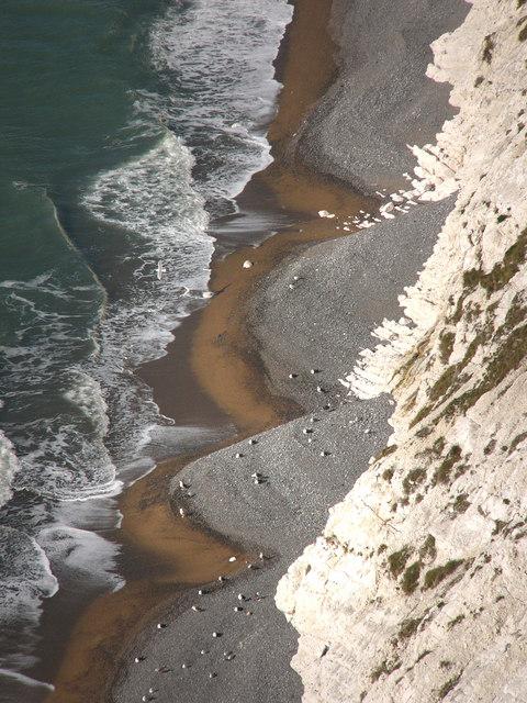 The beach, Scratchell's Bay