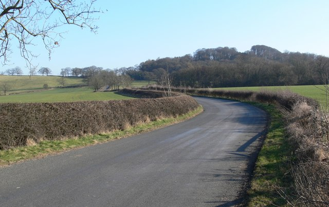 Country lane towards Botany Bay Fox Covert