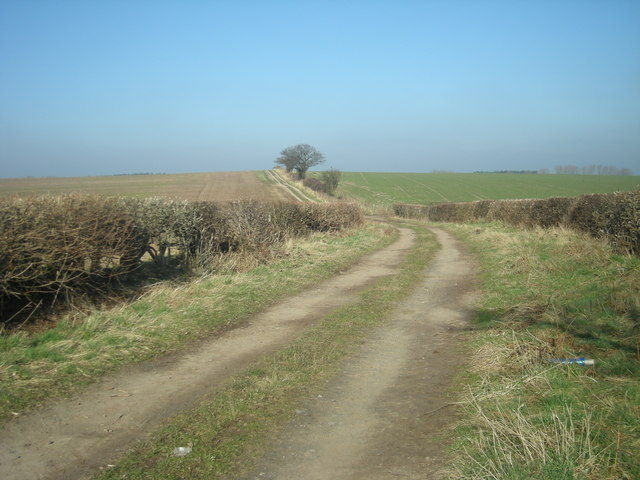 Bridleway to Guy's Bank