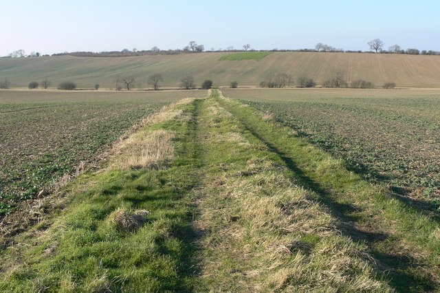 Farm track across the fields