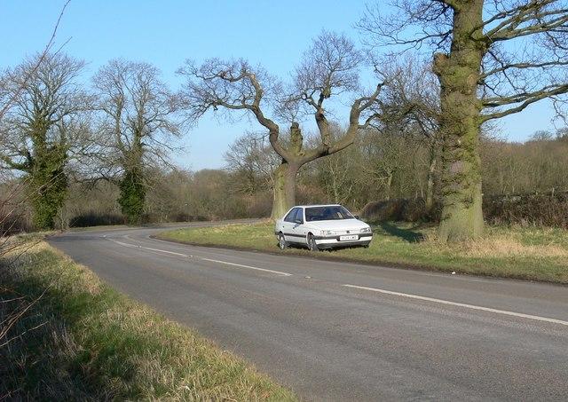 Tilton Lane near Botany Bay Fox Covert