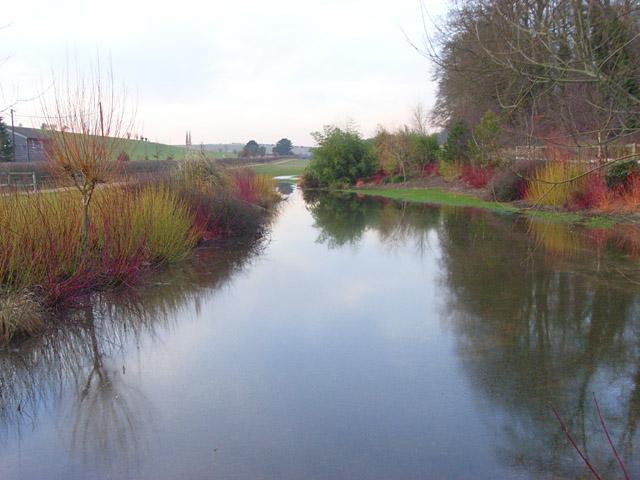 Pond, Lambourn