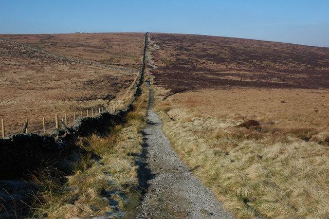 Footpath to Shining Tor