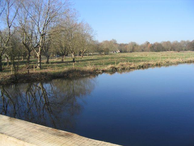 River Test very near Mottisfont
