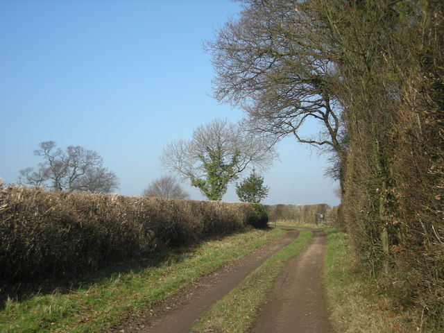 Track alongside Chapman's Wood