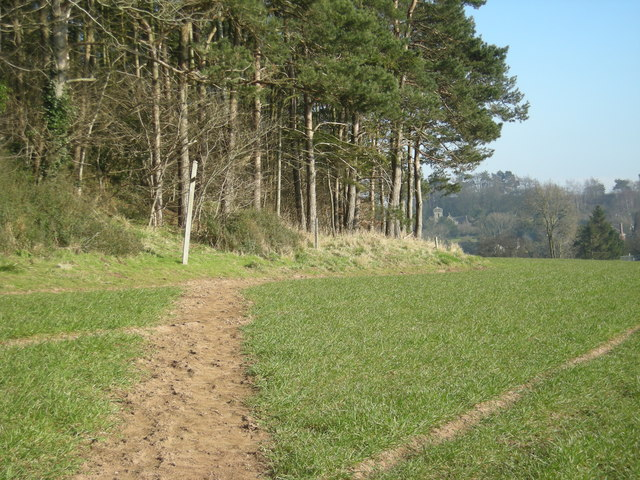 Footpath past Hill Plantation