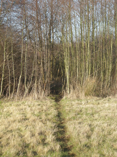 Footpath into Orslow Spinney