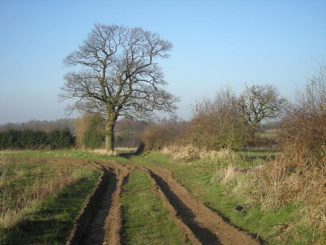 Farm track near Orslow
