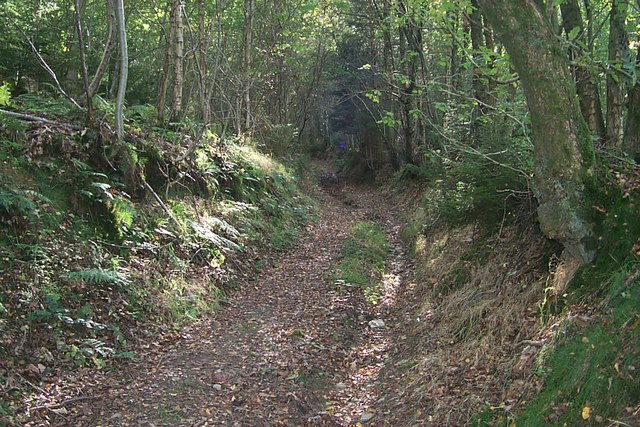 Radnor Forest - Original road