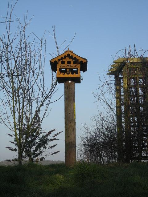 Posh bird-house at Wyndford Mill Farm