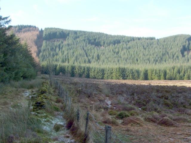 Boundaries at the edge of Auchendennan Muir
